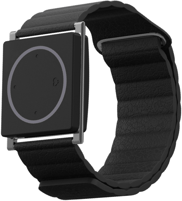 Embrace Watch